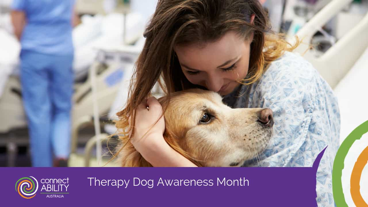 Therapy Dog Awareness Month - ConnectAbility Australia