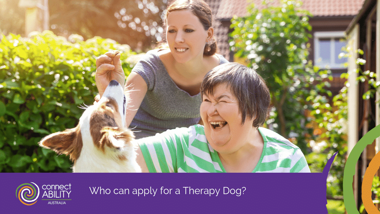 Therapy Dog Awareness Month | Therapy Dog