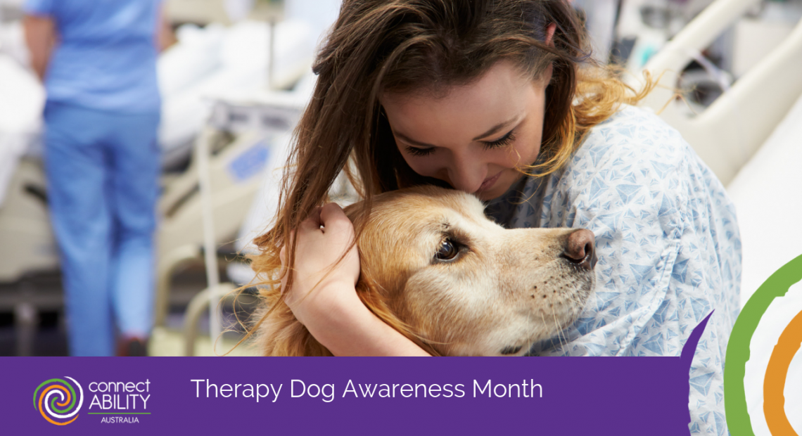 Therapy Dog Awareness Month